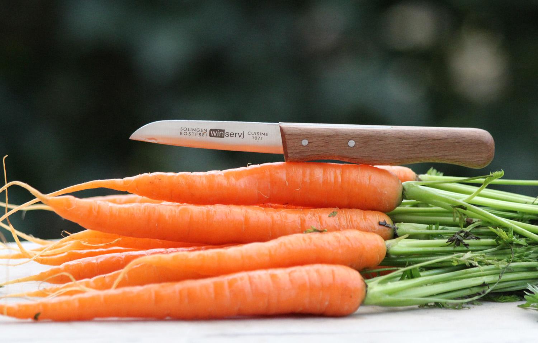 Gemüsemesser aus Solingen mit rostfreier Klinge und Buchenholzgriff