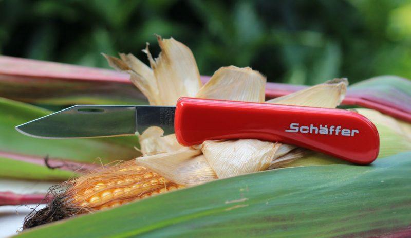 Taschenmesser aus Solingen mit rostfreier Klinge und rotem Griff