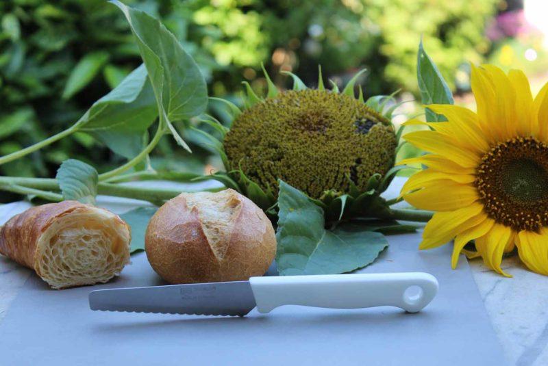 Scharfes Frühstücksmesser mit rostfreier Wellenschliffklinge aus Solingen